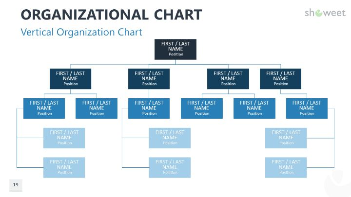 Organizational Charts for PowerPoint Charts  Diagrams for