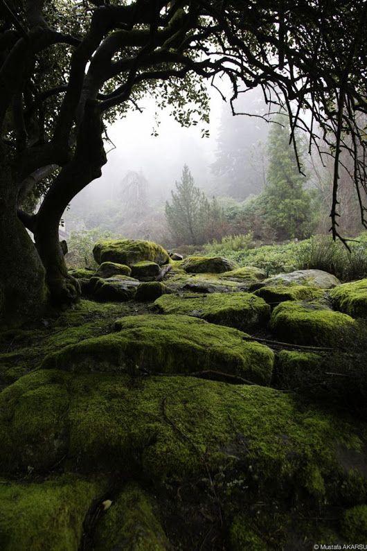 Malvern Hills, England