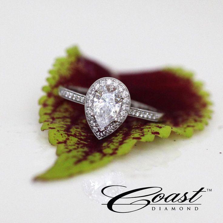 The perfect, pear-shaped diamond ring.   #coastdiamond #showyourcoast #engagementring #weddinginspo #diamonds #halo #love #sparkle #dazzle #bridalinspo #bridetobe #tietheknot #sayyes #platinum #diamonds #love #sparkle #pearcutdiamond #pearshaped #diamondring