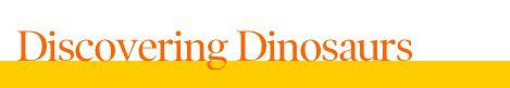 Free Lesson Plan   Dinosaur Lesson Plan Grades 3-4   DiscoveryEducation.com
