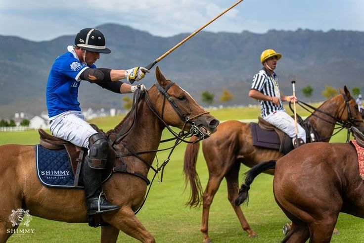 Val de Vie Estate for the Veuve Clicquot Masters Polo 2016 and our incredible Shimmy after party! Shimmy Polo Team played