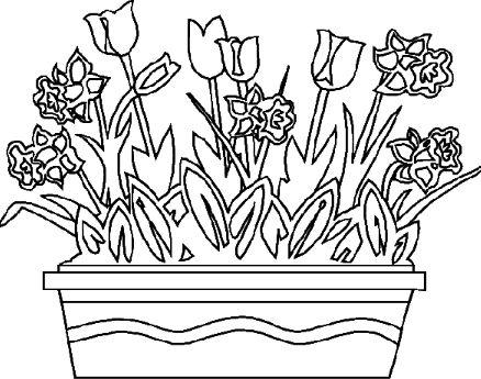 100 best Lente Kleurplaten images on Pinterest Coloring books