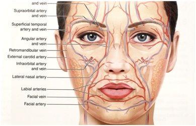 перманентный макияж, перманентный макияж с анестезией, перманентный макияж губ, как сделать анестезию при перманентный макияж, где сделать и сколько стоит в Москве