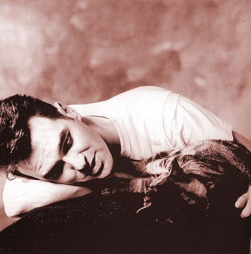morrissey (and feline friend)