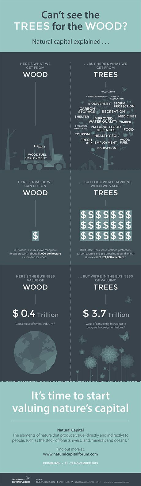 What is natural capital? Valuing nature may be complex but it could prove vital for the future. This infographic illustrates the economic benefits of wood compared to those that are gained from trees.