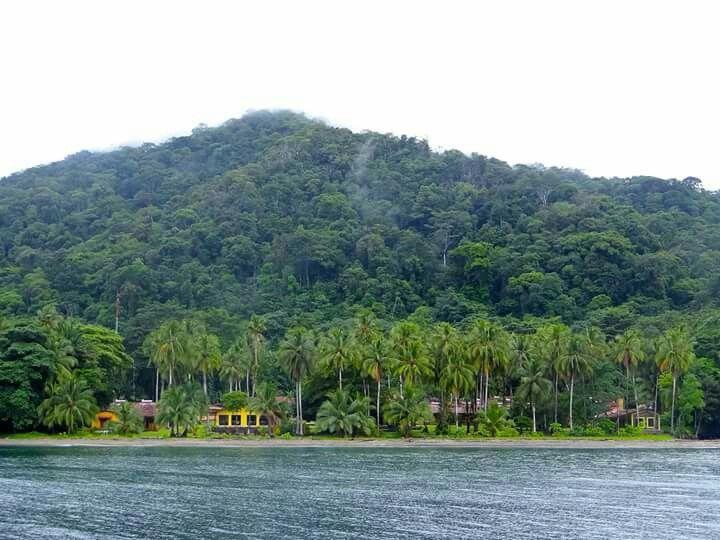Isla gorgona FOTOGRAFÍA MICB