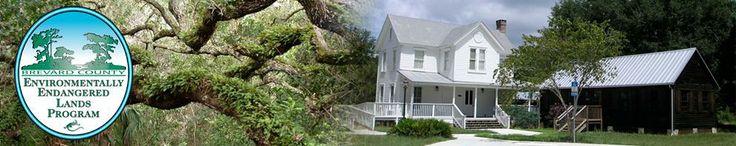 "Sam's House at Pine Island, Brevard County, Florida -Environmentally Endangered Lands Program ""EEL"". Native grasses used in restoration project: of Spartina bakeri ( sand cordgrass), Juncus roemerians (needle rush or black rush) and Distichlis spicato (saltgrass)"