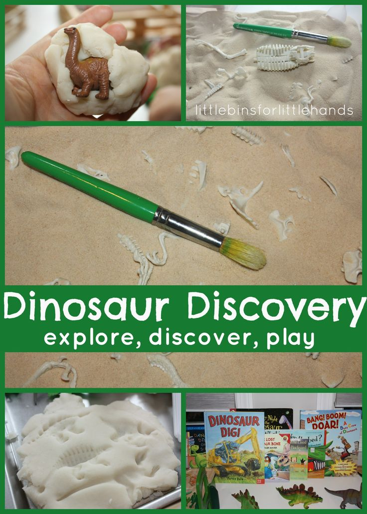 Preschool Dinosaur Discovery Table Encouraging Exploration & Discovery of New Ideas Hands On Preschool Dinosaur Play & Learning Here's our dinosaur themed discovery table to go with our current unit on what else, dinosaurs! I always like to include sensory play, so I have ...