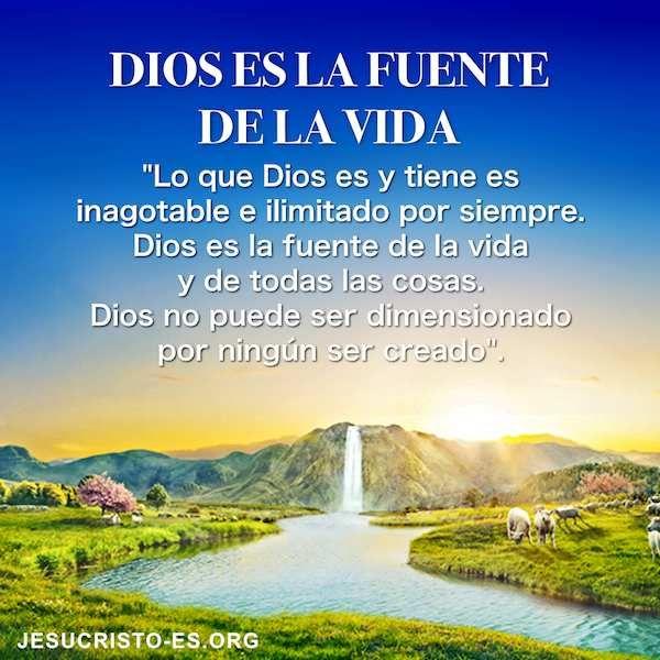 Aforismos De La Vida Dios Es La Fuente De La Vida Buscar Buenasnuevas Intercesión Salvado Testimonio Creerendios Dios Es Vida La Fuente De La Vida Dios