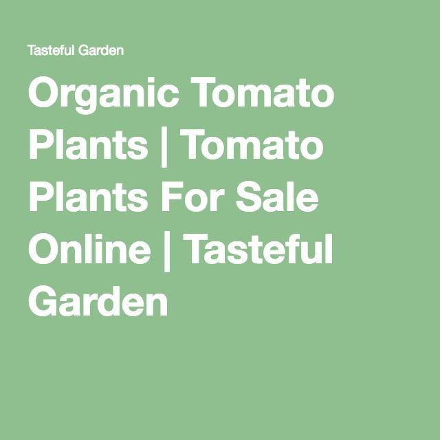 Organic Tomato Plants | Tomato Plants For Sale Online | Tasteful Garden