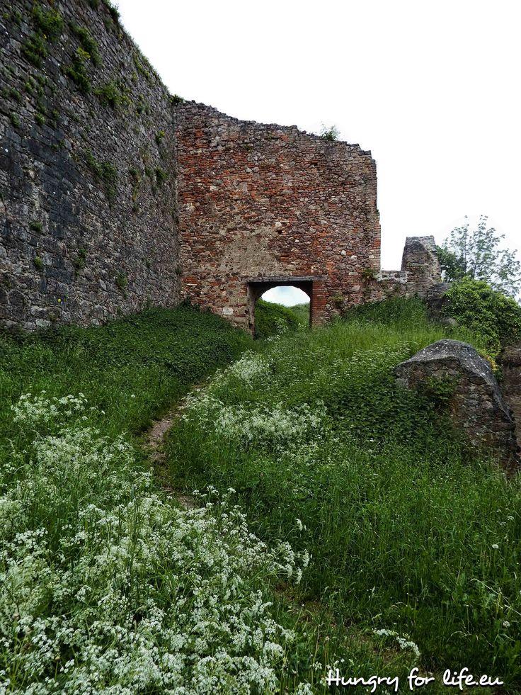 Германия, Бавария, Регенсбург, Донауштауф, руины, замок, руины замка, весна, 2016,