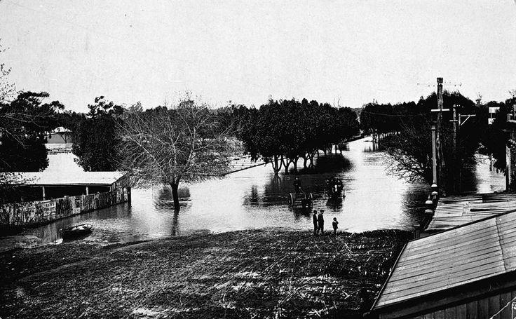 Flooded street, Horsham, Victoria, circa 1905