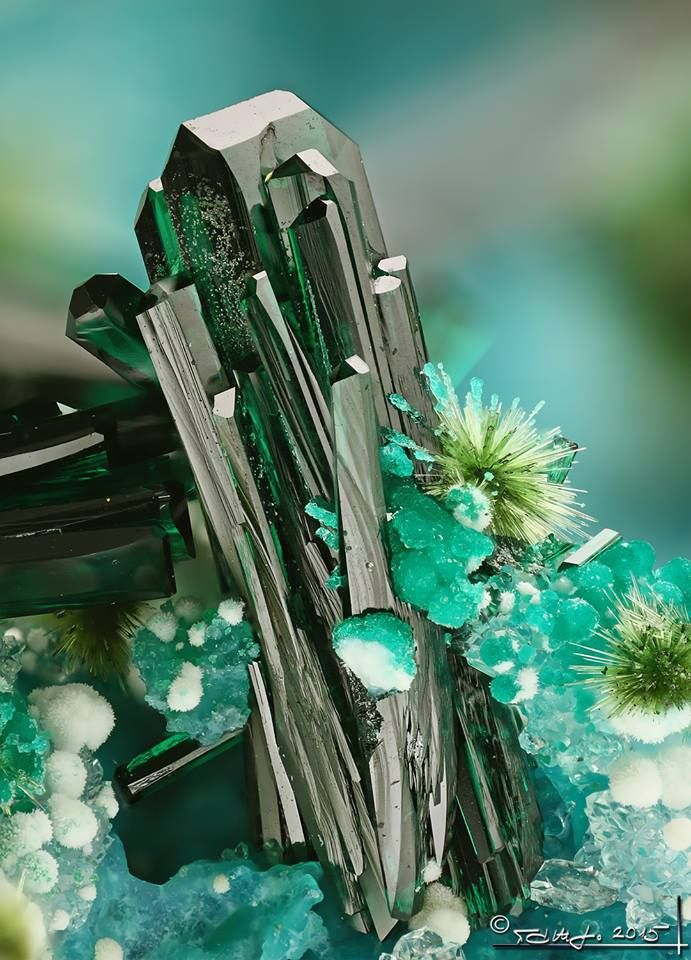 Atacamite with libethenite sprays from Chile