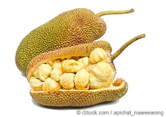 Learn more about jackfruit nutrition facts, health benefits, healthy recipes, and other fun facts to enrich your diet. http://foodfacts.mercola.com/jackfruit.html