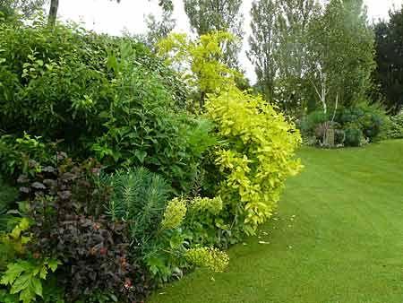 Les 27 meilleures images propos de massifs sur pinterest for Plante et jardin catalogue