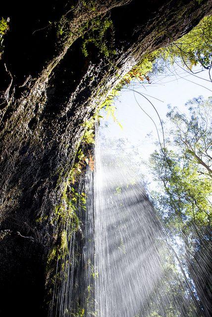 Waterfall at Blue Mountains Australia http://www.annehoang.com.au/photoblog/