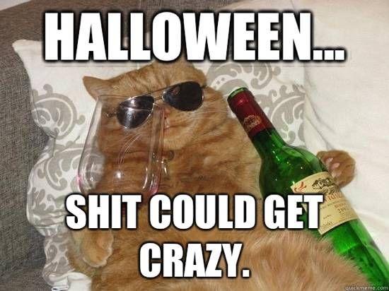 109 best Halloween Humor, Human & Pet Costumes, Pumpkins, & DIY ...