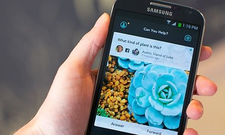 Twitter co-founder Biz Stone's Jelly app wobbles onto iPhone and Android