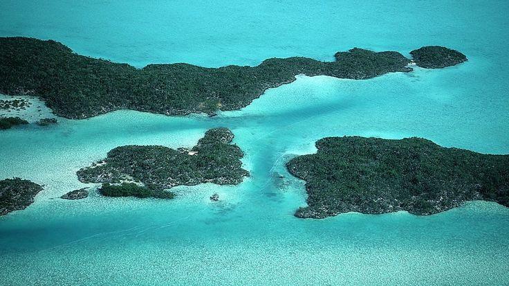 TONY-MAC-FUREUR-DE-VAINCRE-TOP-1-TURKS AND CAICOS ISLAND