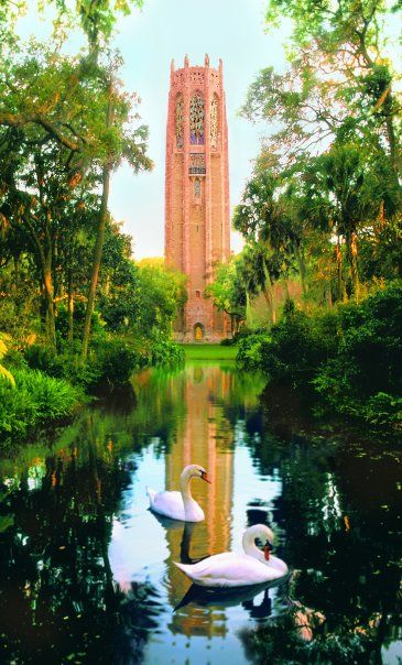 Bok Tower Gardens, Lake Wales, Florida.  This garden contains the highest point in peninsular Florida.