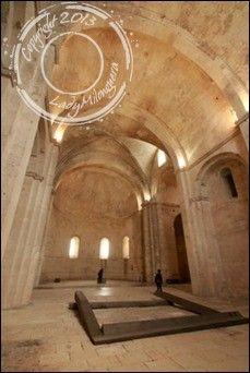 Abbaye-Montmajour-Arles (26)