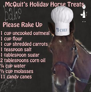 McQuit's Holiday Horse Treats. How many does this serve? That's a LOT of candy canes
