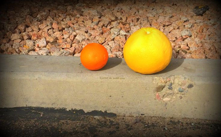 My last half day in sunny, warm Arizona. This evening, Sunday, it's back to whatever Midwest winter weather the Chicago area has to offer. Vitamin C is especially good in winter to help kee…