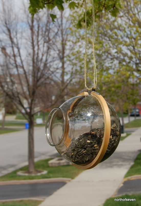 DIY bird feeder embroidery hoop and glass light cover! I am doing this. Have all the parts laying around!
