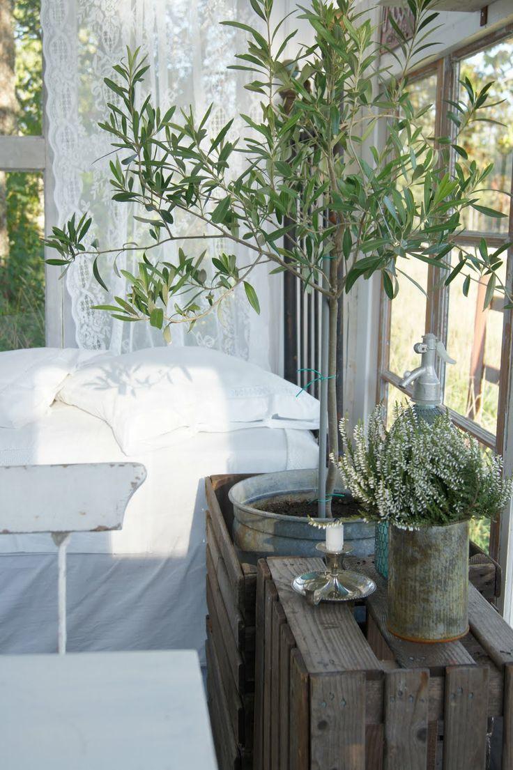 Trälådor, zinc krukor, gröna växter, vita skira gardiner, fint och fridfullt.