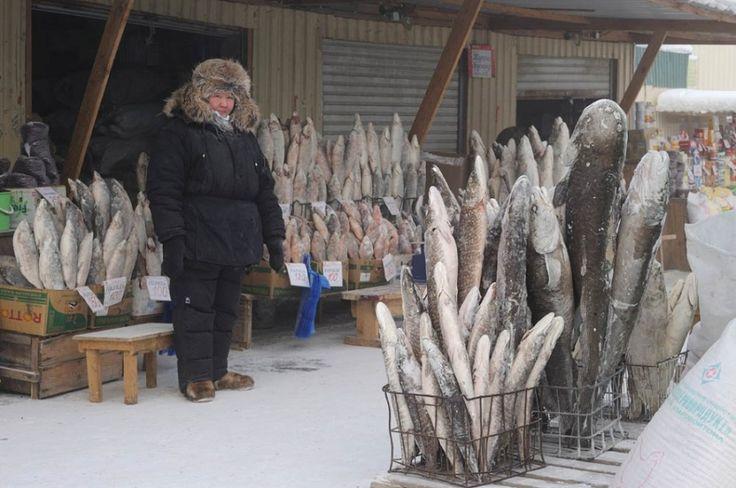 Кому рыбный букетик? — Фото дня, 21 декабря 2014