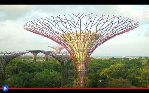 I 18 super-alberi della città di Singapore Sotto un cielo prossimo al tramonto, cammino all'altezza di un palazzo di 6 piani, lo sguardo rivolto ad enormi conchiglie di ferro e vetro. Dinnanzi a me, uno skyline urbano particolarmente elevato, #singapore #asia #architettura #giardini