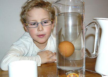 Laboratorium Szalonego Naukowca. Eksperyment 2. Jajko w solance   ekologiczne rodzicielstwo