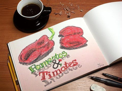 Pomentos & Timates - drawing for the logo