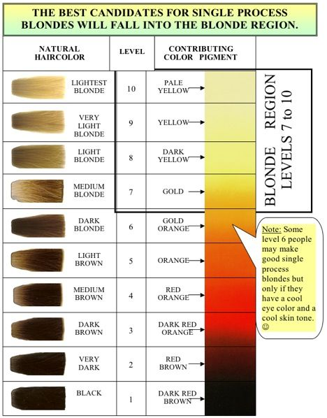 Natural Levels Of Hair Color