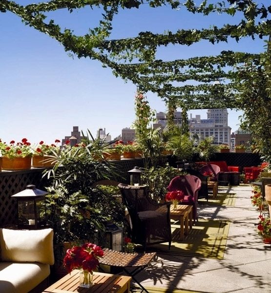 Roof Top Garden Terrace Garden Kitchen Garden Vegetable: Grammercy Park Hotel