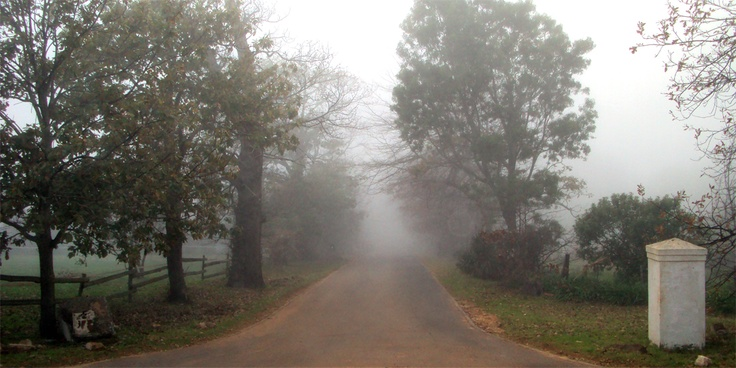 Road to the Tokai Manor House