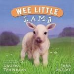 6 months - Wee Little Lamb by Lauren Thompson & John Butler. Cute book lovely pictures. Bit old for Danny yet (6 mth old) age 2-6