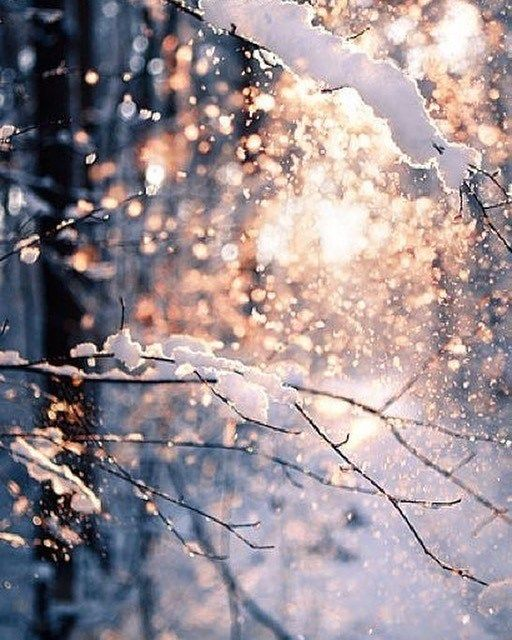 42 Beautiful Winter Images Winter Image Winteraesthetic Winter Christmasimage Winter Aesthetic Winter In Winter Wallpaper Winter Images Winter Landscape