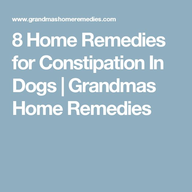 8 Home Remedies for Constipation In Dogs | Grandmas Home Remedies