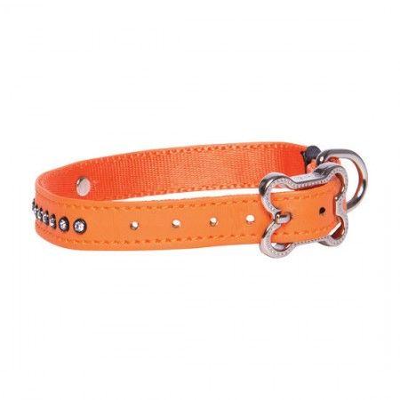 Rogz Lapz Luna Dog collar Orange - Medium