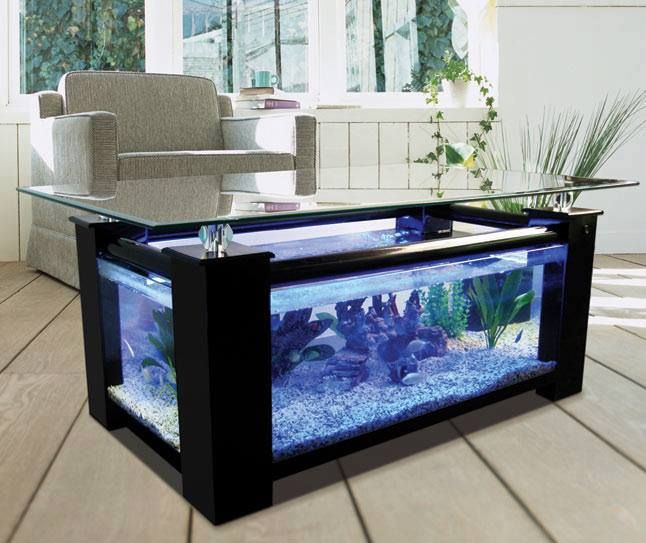 If You Think That Aquarium Is Home For Fish, You Are Half Right. Modern  Aquarium Is Creative. Aquarium Table Do Two Functions: Coffee Table And  Home For ...