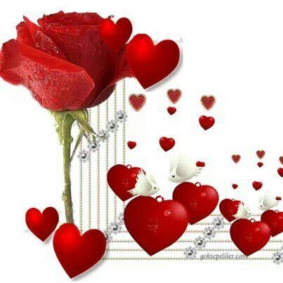☆ ¸.·'¯) ✿Pinterest Rose ✿(¯`·.¸ ☆