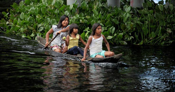 Os imigrantes, sendo que a maioria são mulheres, partiram do nordeste da Venezuela em busca de uma vida melhor no Brasil (Foto: Yolanda Simone Mêne/Amazônia Real)  Boa Vista (RR) – Passados três anos do início da grande imigração dos indígenas venezuelanos do Delta do Orinoco, no nordeste da Venezuela, para o Brasil, seja andando …