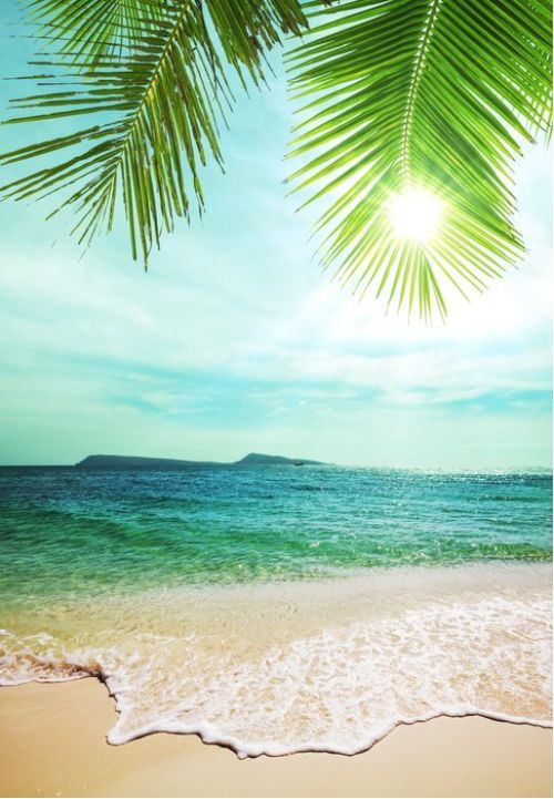 Vintage style tropical beach from $27.99 | www.wallartprints.com.au. #BeachPhotography #LandscapePhotography
