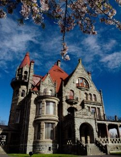 Craigdarroch castle isn't only gorgeous...it's haunted!