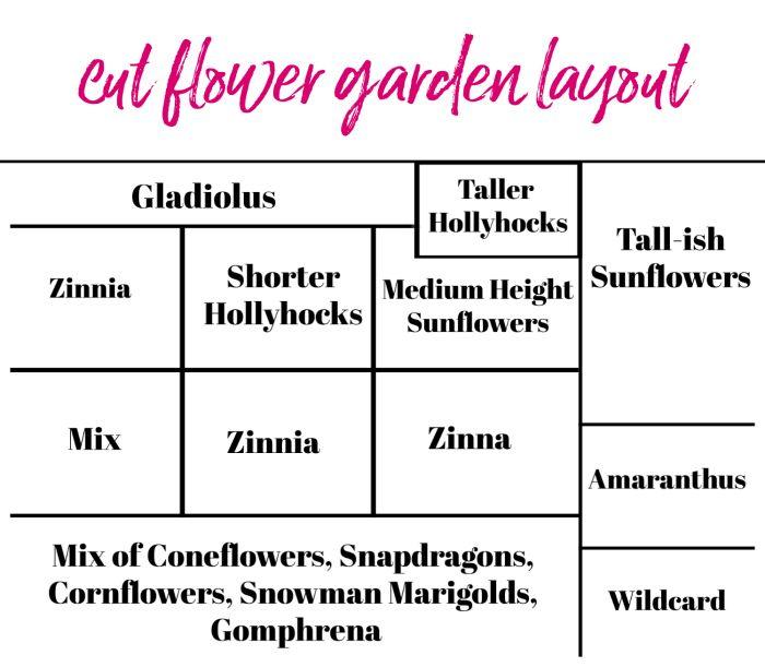 Creating a Cut Flower Garden for Beginners – Cutting garden