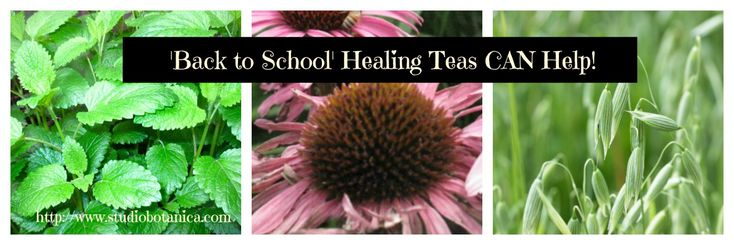Herbal Teas can Help