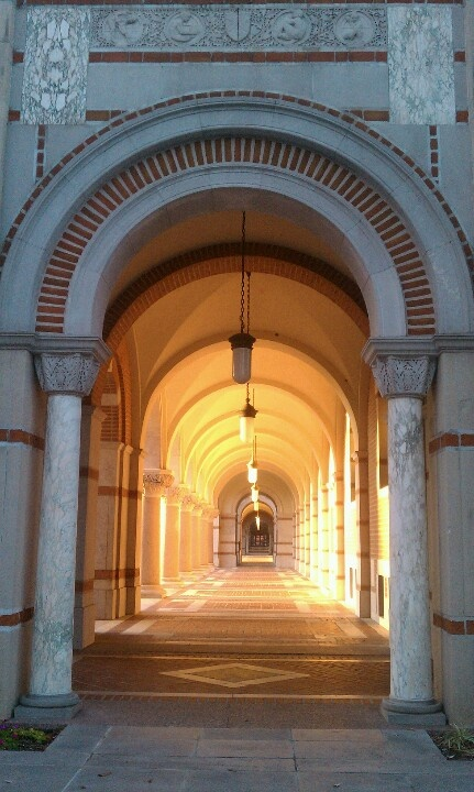 One Day in two years I will be walking threw those Light hallway, in Rice University! #classof2015