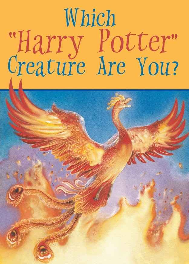 """Which """"Harry Potter"""" Creature Are You? You got: Phoenix You're a creature of light and healing. Like Fawkes, you value goodness and justice, and believe that everyone is capable of real and great kindness. You're an extremely powerful creature, but only bestow your gifts on the deserving."""