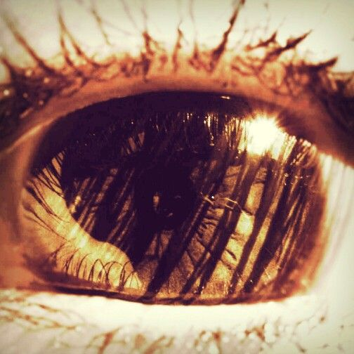 Me #closeup #eyes